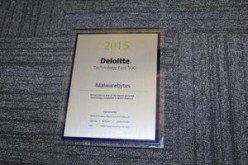 Malwarebytes Named to Deloitte's 2015 Technology Fast 500