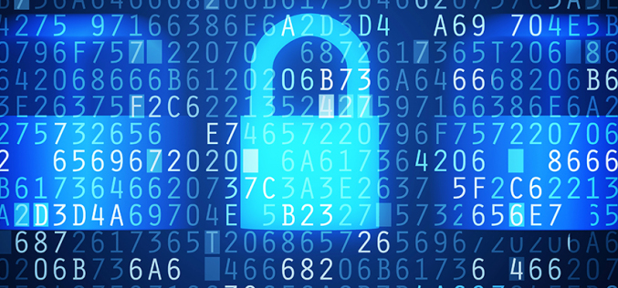 Many firms in the dark on cyber security investment