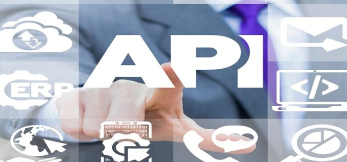 APIs: Risks, Potential and Security Solutions