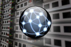 Over 80% of network teams play a role in security efforts