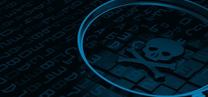 What is Malware Flux and How Can You Avoid it?