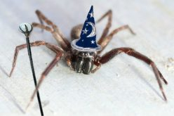 Wizard Spider Upgrades Ryuk Ransomware to Reach Deep into LANs